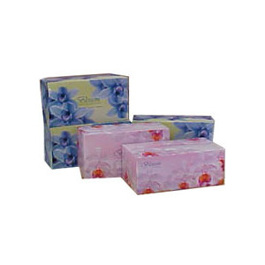Blossom Facial Tissue 2 ply 180 sheet (Carton 32)